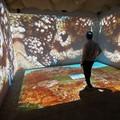 Il Covid ferma la cultura, sospese le domeniche gratis al museo