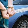 Si scaglia contro poliziotti e familiari, arrestato 24enne