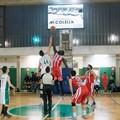 Passo dopo passo. Al Palalosito di scena il derby tra As Basket Corato e Molfetta