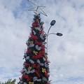 Si accende il Natale anche nei luoghi del dolore: alberi natalizi all'Umberto I e al Cimitero Comunale