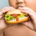 Alimentazione a scuola, l'allarme di Coldiretti: «In Puglia obeso il 31% dei minori»