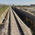 Disagi nel trasporto ferroviario, Legambiente chiede colloquio con l'assessore Tarricone