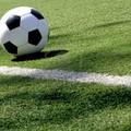 Corato Calcio, il Consiglio Federale ha deciso: «L'Eccellenza ripartirà, senza retrocessioni»