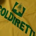 Nuovo presidente per Coldiretti. Nel direttivo anche il coratino Pasquale Cinone