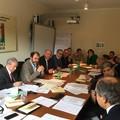 Crisi agricola, Anci Puglia: «risorse e misure straordinarie per gli olivicoltori»