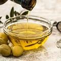 Arriva l'olio nuovo in Puglia: «Dimezzata produzione ma qualità eccellente»