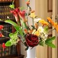 Maggio in fiore: nella città di Corato sboccia la prima edizione della kermesse floreale