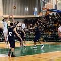 L'As Basket Corato alla prova con il Molfetta