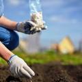 Agricoltura, le imprenditrici pugliesi sfidano la crisi