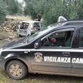 Auto cannibalizzata rinvenuta nelle campagne