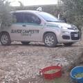 Guardie Campestri sventano furto di olive