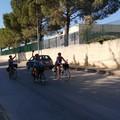Da Pavia a Corato in bicicletta: l'impresa di 4 amiche è compiuta