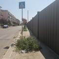 «Regalate un tagliaerbe a chi dovrebbe occuparsi del decoro urbano»