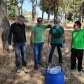 Volontari ripuliscono Bracco dai rifiuti