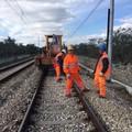 """Cavi ferroviari tranciati, per la Ferrotramviaria è stato un  """"attacco """""""