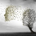 Malattia di Alzheimer, domani un convegno alla Regeneretion Home