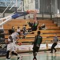 Derby NMC-Basket Corato, è vittoria dei neroverdi
