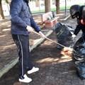 Rispetto dell'ambiente e della città, i volontari: «Adotteremo Piazza Almirante»