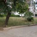 In Piazza Buonarroti un centro per il piccolo commercio di prodotti: in arrivo fondi dal GAL