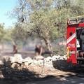 Fiamme in contrada Bracco, fuoco minaccia le abitazioni