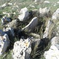 Necropoli San Magno, Archeoclub richiede istituzione di un Tavolo Tecnico