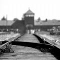 """""""Ricordare per non rivivere """", in memoria delle vittime del nazifascismo"""