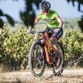 """Mountain bike, a Corato il 2° Memorial  """"Cataldo Livrieri """""""