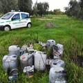 Decine di litri di oli esausti abbandonati in campagna