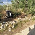 Ruvo-Corato: fuori strada con l'auto, giovane 23enne perde la vita
