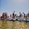 Scuola d'agosto, al mare con il surf