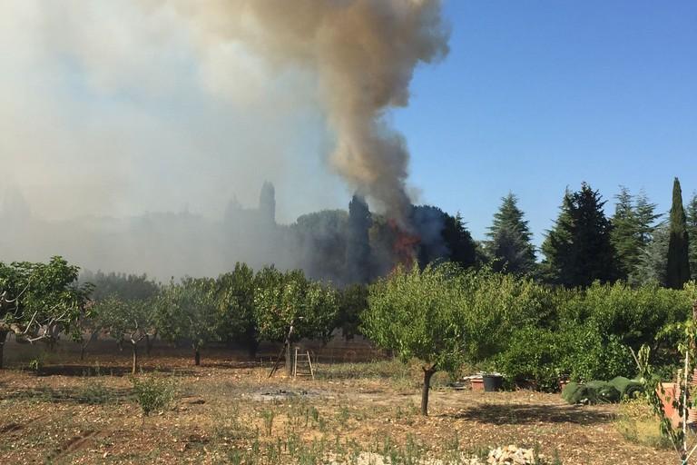 Ancora fiamme nelle campagne coratine