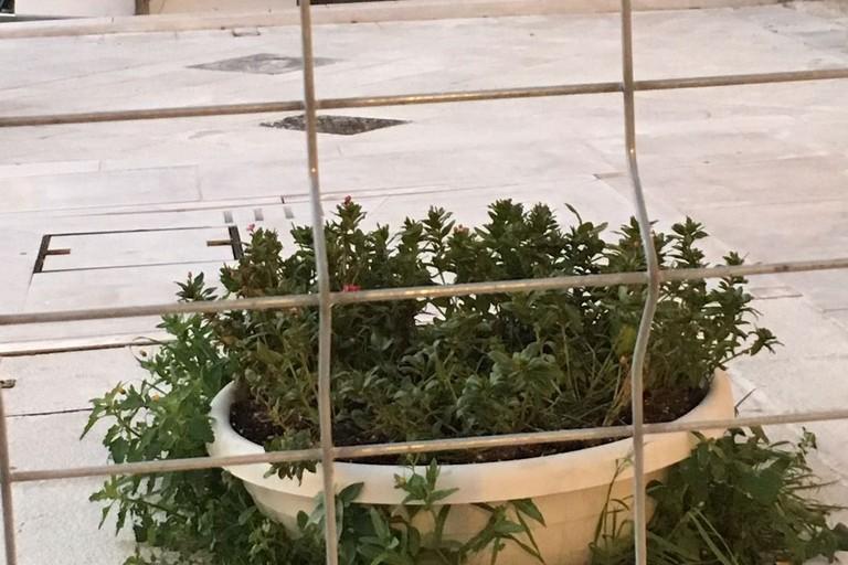 Piazza Di Vagno:  «Il nostro terzo Natale in gabbia»