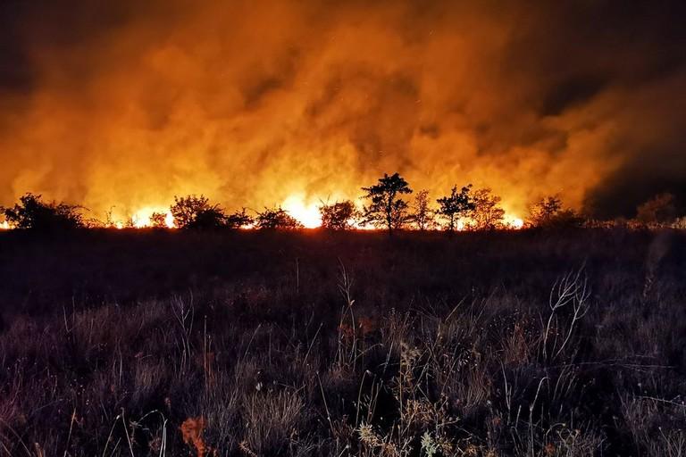 Incendio nelle campagne di Corato